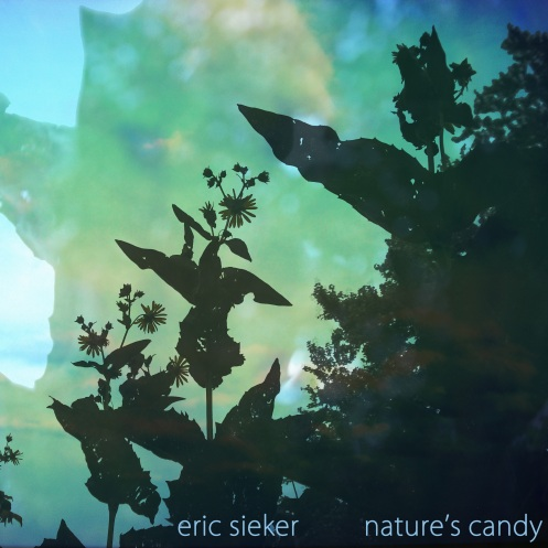 natures candy2 copy